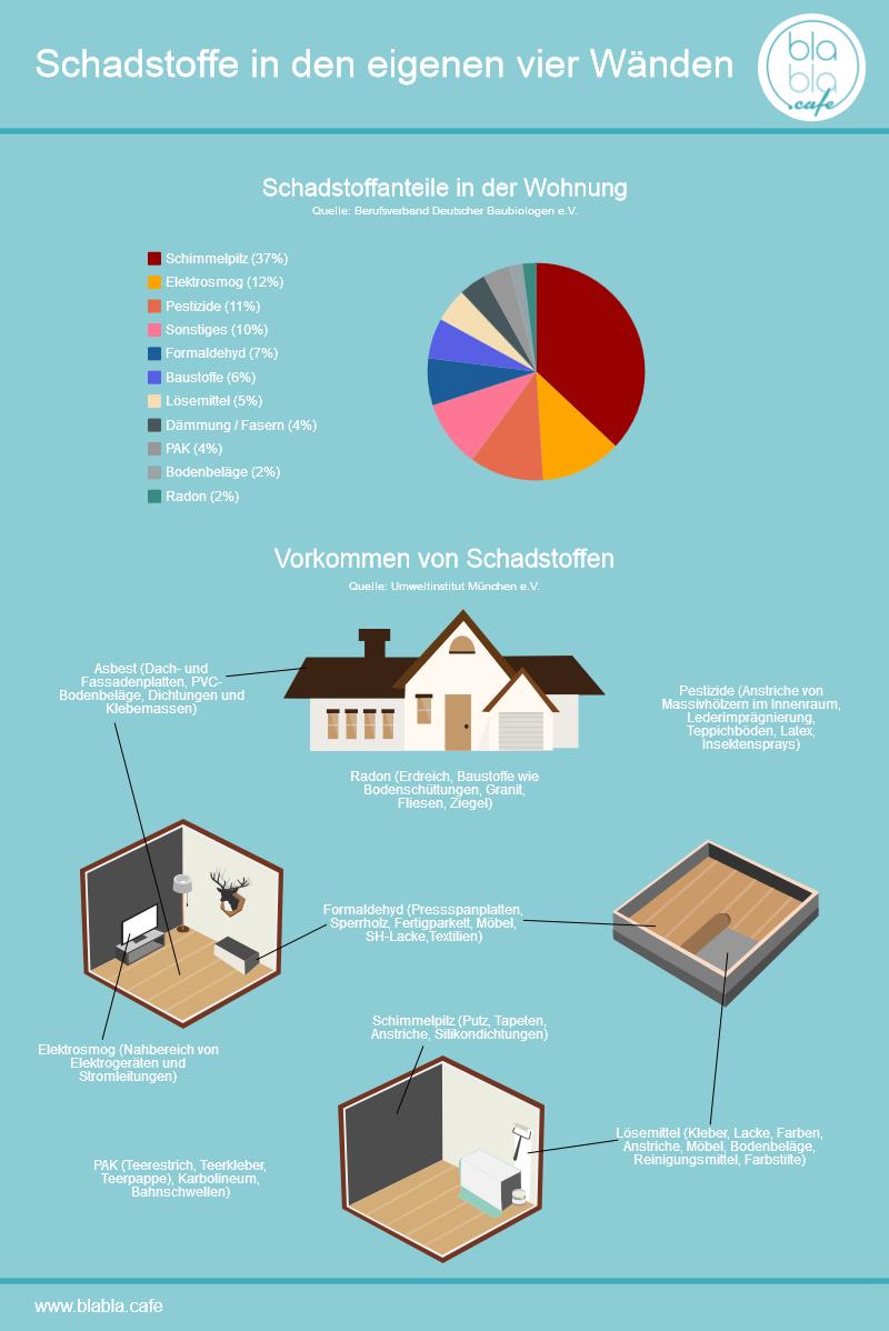 Schadstoffe in den eigenen vier Wänden Infografik