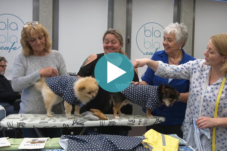 oh NÄH! – Kleidung für Hunde nähen (Aufz. vom 11.05.2018) › blabla.cafe