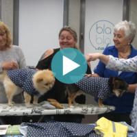 oh NÄH! - Kleidung für Hunde nähen (Aufz. vom 11.05.2018)